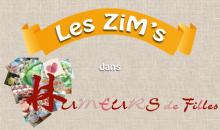 les-zims-dans-humeurs_de_filles